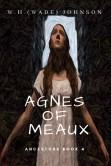 Agnes Cover Pallete 4